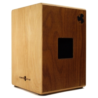 Cajon Klanginitiative POPular dual