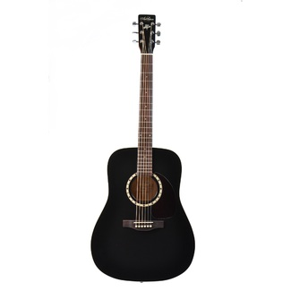 Art & Lutherie Cedar Black EQ Westerngitarre